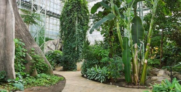 Botanička bašta Jevremovac, jedna od najraskošnijih oaza na svetu