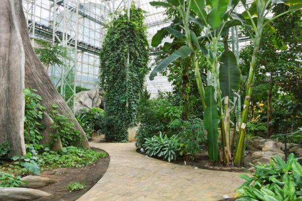 Botanicka-basta beograd