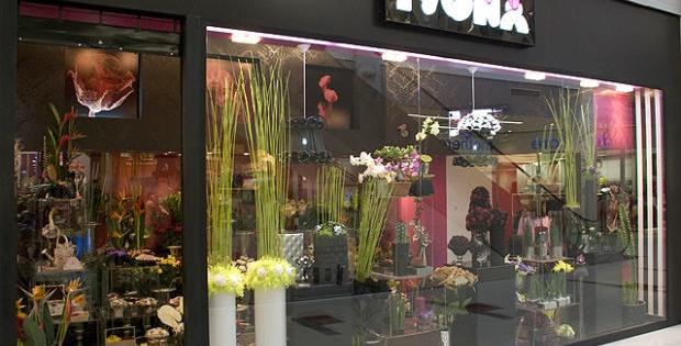 Cvećara Ivona, ulaže u naše trenutke sreće i zadovoljstva