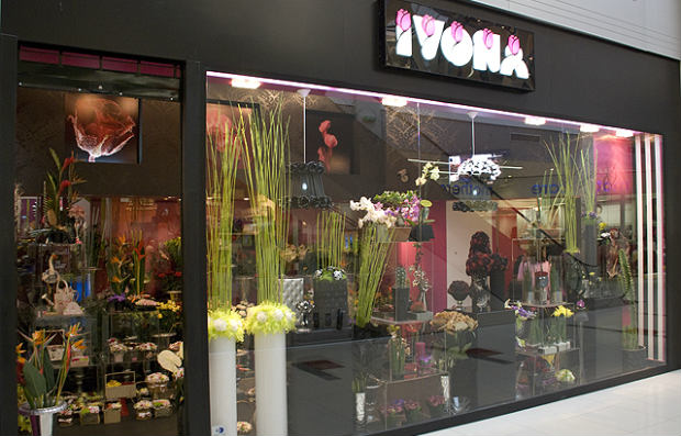 Cvecara Ivona