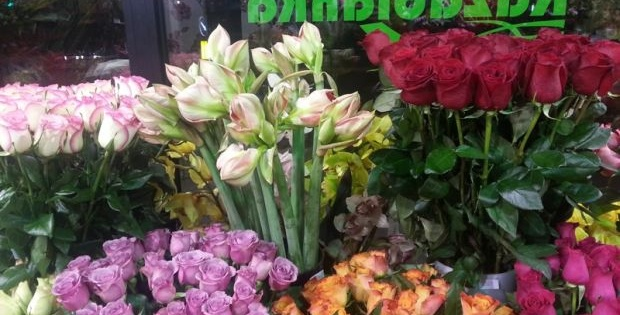 Cvećara Kazablanka, nestvarno lepi, bajkoviti aranžmani