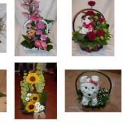 Cvetni vrt 3