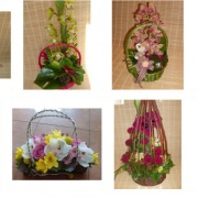 Cvetni vrt 4